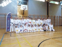 Karate Club Gleisdorf